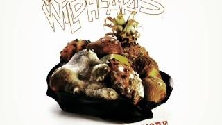 the wildhearts 29 x the pain 96