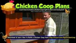 Chicken House Plans (backyard Chicken Coop & Barn Designs)