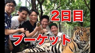 【プーケット2日目】プーケットは海だけじゃない!!〜プーケットタウン、タイガーキングダム〜 thumbnail