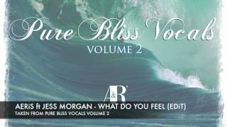 Aeris ft Jess Morgan   What do you feel Bangin Edit Pure Bliss Vocals Vol 2