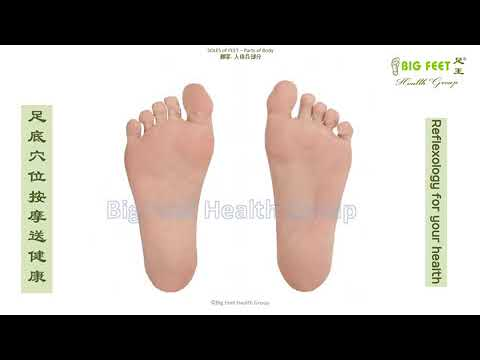 Reflexology Training of Big Feet