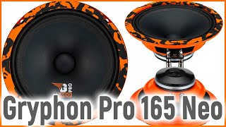 DL Audio Gryphon Pro 165 Neo, громко, широко, бюджетно, обзор и прослушка