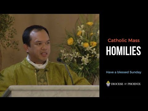 Fr. Ramirez's Homily for July 15, 2018