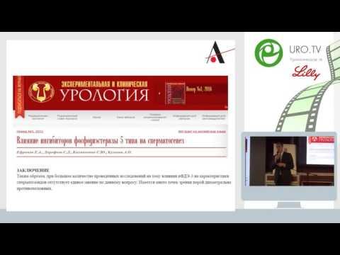 Корнеев И А - Мужское бесплодие - YouTube