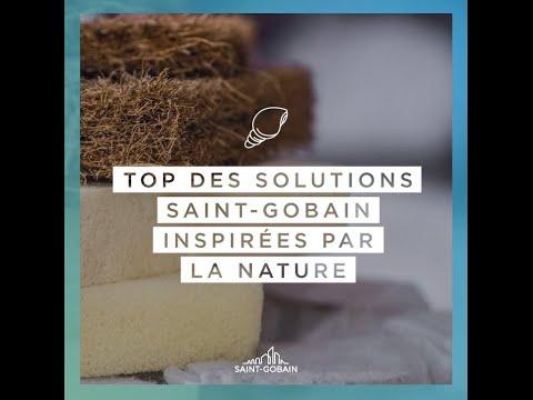 Top 5 des innovations de Saint-Gobain inspirées par la nature