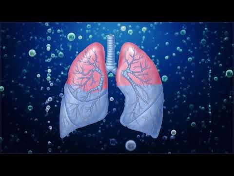 Смогут ли люди когда-нибудь дышать под водой? | Перевод DeeAFilm