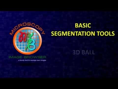 MIB in brief: Manual segmentation tools