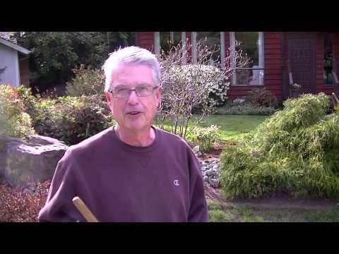 Testimonial from Gary in Mill Creek Washington
