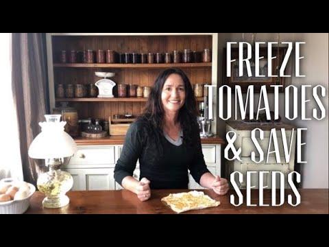 Easy Freeze Preserve Tomato recipe & Saving Tomato Seeds