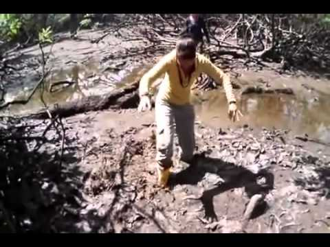 Siona Lodge | Cuyabeno Reserve | Amazon Ecuador