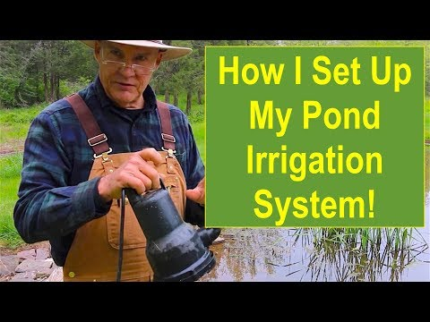 How I Set Up My Pond Irrigation System for My Pumpkin Patch Area
