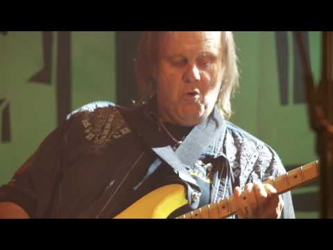 WalterTrout performing with the Supersonic Blues Machine