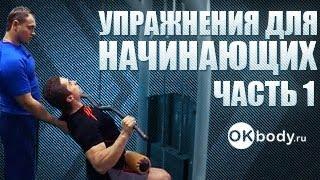 Смотреть видео упражнения бодибилдингу видео