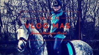 Een gezellige zondag op stal, en beide pony's gereden en gefilmd vo...