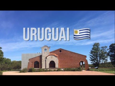 VLOG #3 | Montevideo | Viagem - Bodega Bouza | Mercado Agrícola | Pôr do Sol | Jantar La Perdiz