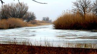 ПОСЛЕДНИЙ ЛЁД в Астрахани. Караси и щуки маленькой реки. Рыбалка в Астрахани.