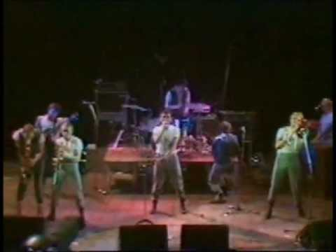 Dexys Midnight Runners - Show Me/There There My Dear - Projected Passion Review Part 1