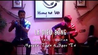 Lá Diêu Bông - Sáo trúc Guitar - Nguyễn Trân ft Ngọc Tú Jonathan