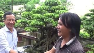 Giao dịch thành công Gần sân gôn Hoàng Gia Ninh Bình tại vườn anh Bạch
