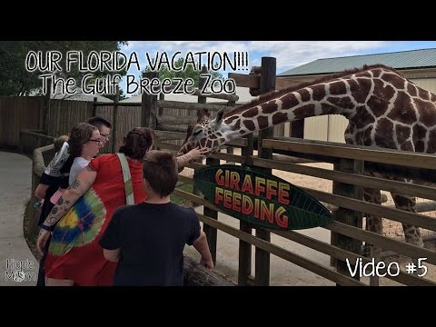 The Gulf Breeze Zoo