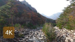 [4K Seoraksan] 설악산(외설악) 가을 산책,…