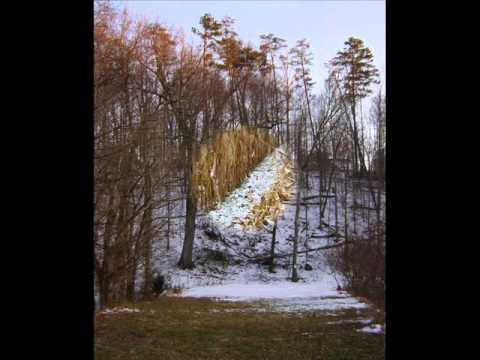 Winter, 1st Movement Linverno allegro non molto