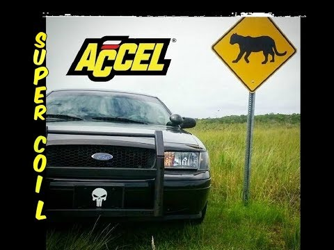 Accel Super Coils for Your Crown Victoria What You Need to Know Mp3
