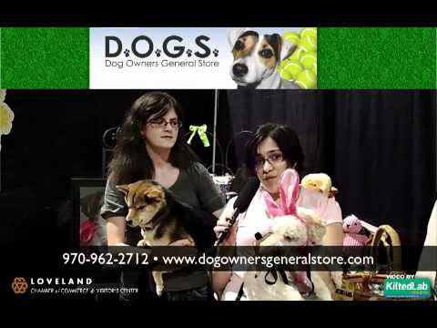 Loveland co dog owners general store pet supplies grooming loveland co dog owners general store pet supplies grooming training solutioingenieria Gallery