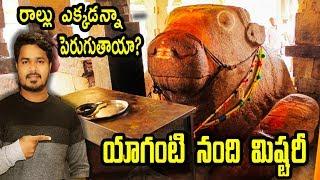 యాగంటి నంది రోజు రోజుకి పెరుగుతుందా ? | Do Stones Really Grow | VikramAditya Latest Videos | #EP186