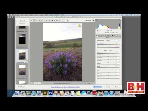 Beyond the Snapshot: Fine Art Landscape Photography