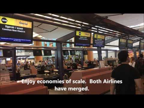 Singapore Changi Terminal 2 Scoot Tiger Airways Common Check in