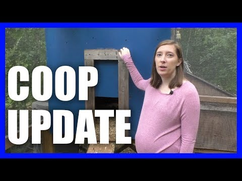 Most Efficient Chicken Coop UPDATE {Two Years Later}