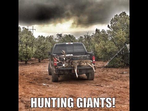 Hunting Giant Mule Deer On The Kaibab Episode #14!  Antler Trader