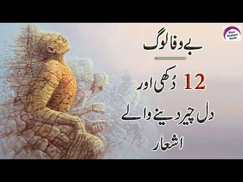 New Sad Quotes | Bewafa Log | Best Urdu Quotations | Amazing Urdu Quotes | Rj Shan Ali | New Quotes