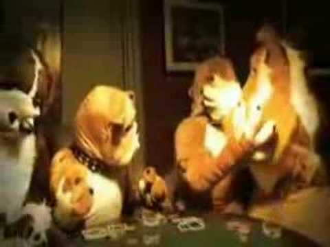dogs playing poker - funny commercial for VC Poker.com