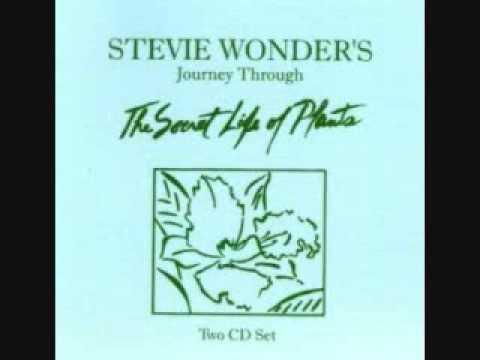 same old story -stevie wonder
