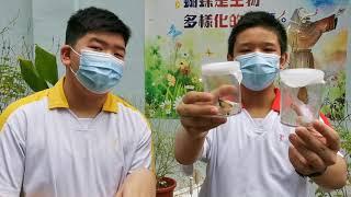 Publication Date: 2020-12-13 | Video Title: 天主教培聖中學-蝴蝶園英語分享