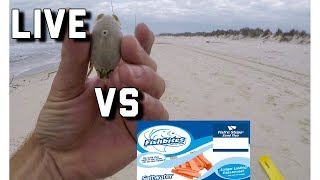 Surf Fishing- Fish Bites VERSUS LIVE Bait