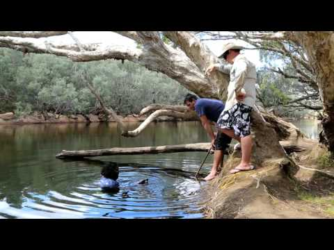 Cairns, Fitzroy Island and Chillagoe Camping Holiday