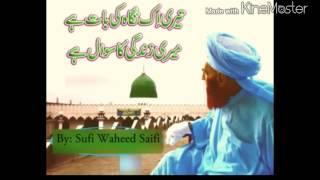 Teri Ik Nigah Ke Baat Hai - Sufi Waheed Saifi