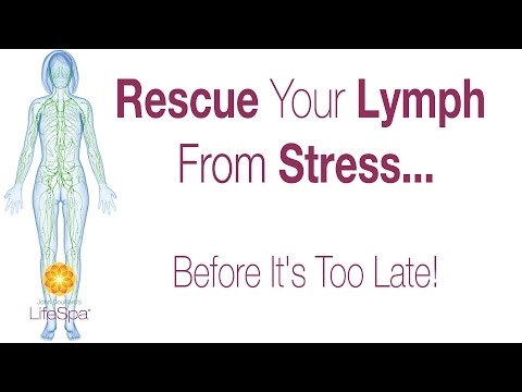 Rescue Your Lymph From Stress    Before It's Too Late! | John Douillard's  LifeSpa