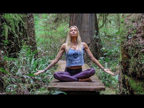 Beautiful Beginner Yoga  ♥ Hatha Class For Everyone  | Tofino