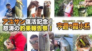 アユサン復活記念・怒涛の釣果報告祭!『霞オカッパリガイド・アユサンの今週の霞水系』