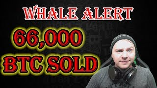 BITCOIN WHALE ALERT - 66,000 BITCOIN MOVED TODAY