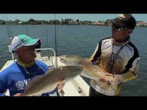 "Sportsman's Adventures: ""Sarasota Reds"" Season 21 | Episode 6"