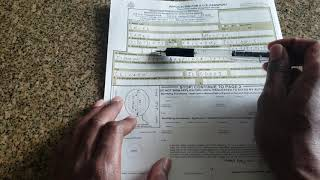PASSPORT APPLICATION TO BEĊOME STATE CITIZEN / AMERICAN NATIONAL - DIPLOMATIC IMMUNITY