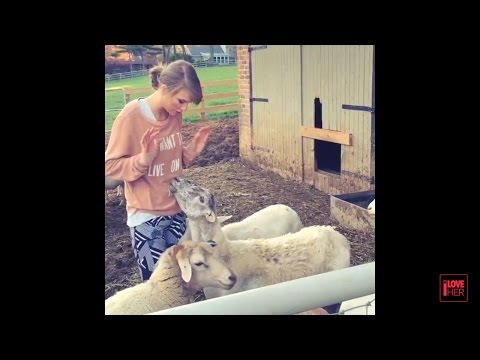 Taylor Swift 'Best & Latest Instagram Videos' 1 -New Video-