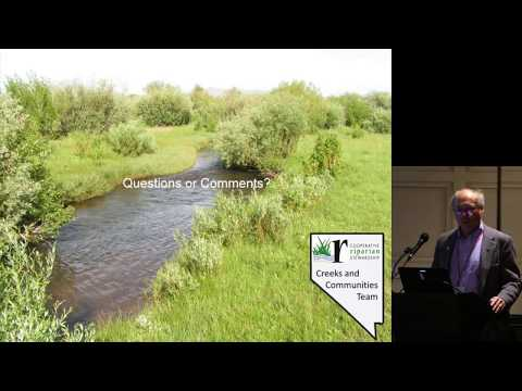 Practical grazing management strategies to maintain or restore riparian function on rangelands