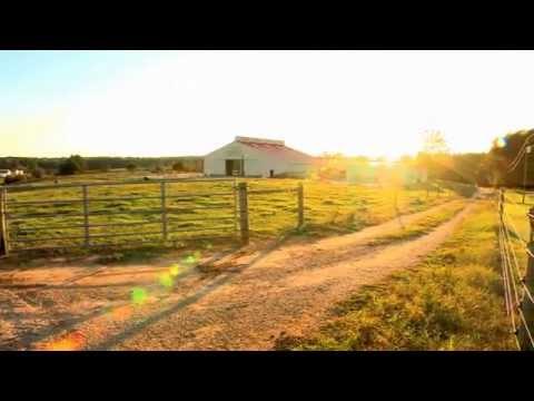Animal Agriculture in North Carolina