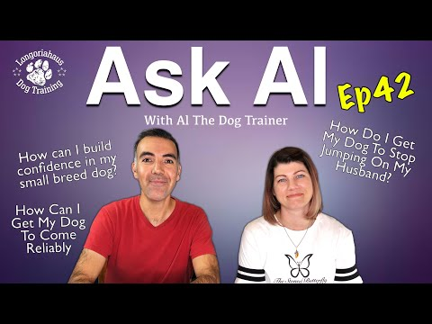 Episode #42 of Ask Al 7/28/19- Building confidence, dog jumping on people, calming a dog, and more